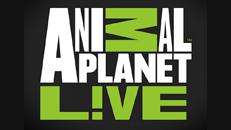 Animal Planet L!VE app on Xbox 360