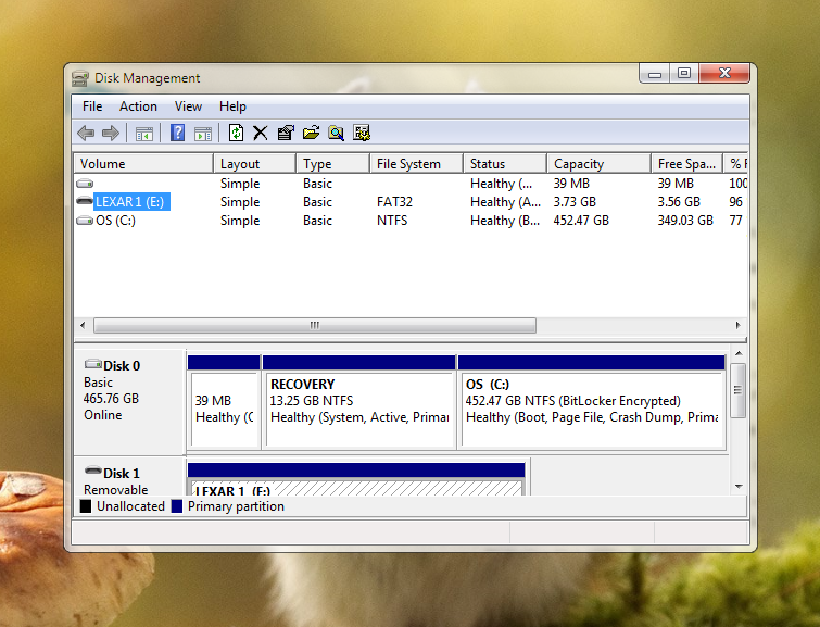 The Disk Management tool in Windows shows connected drives and their layout, file system format, status, capacity, and free space.