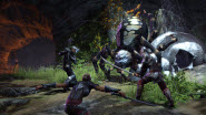 The Elder Scrolls Online combat screenshot