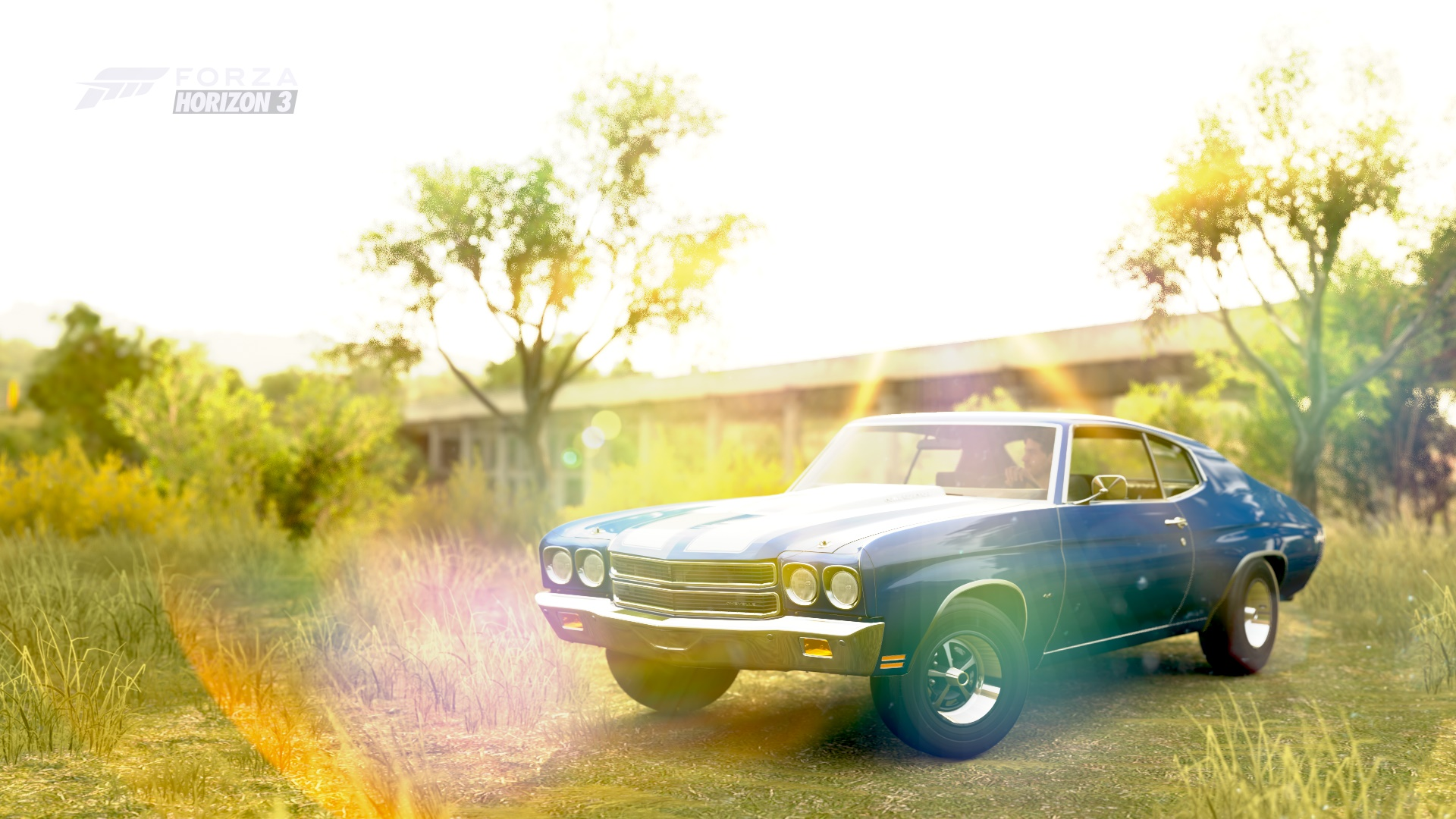Forza Horizon 3 Cars Chevy Chevelle Ss Hello I Have A 64 That Ive 1970 Chevrolet 454 Photo By Nights Viper
